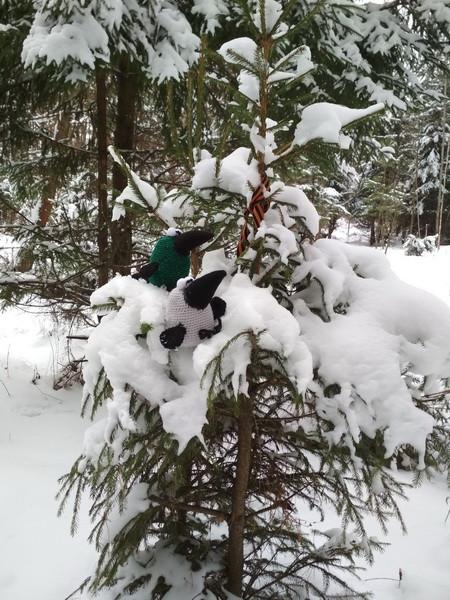 на елке