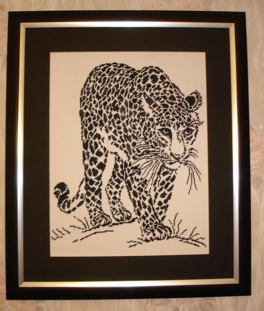 оформленный леопард