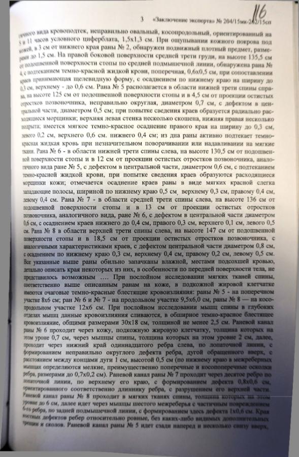 Государственная судмедэкспертиза: убийц Немцова было двое