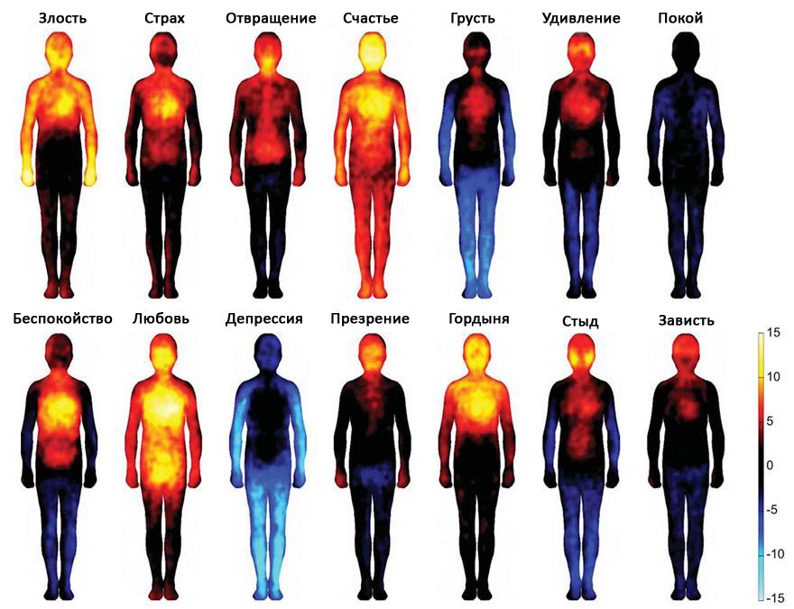 Эмоции и тепловые карты