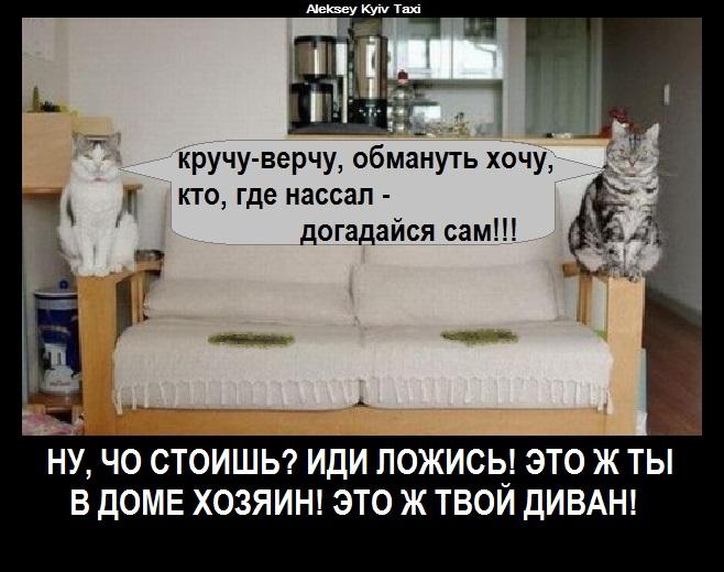 ЦБ РФ...