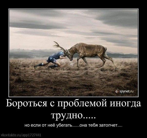 [Изображение: 299946_original.jpg]