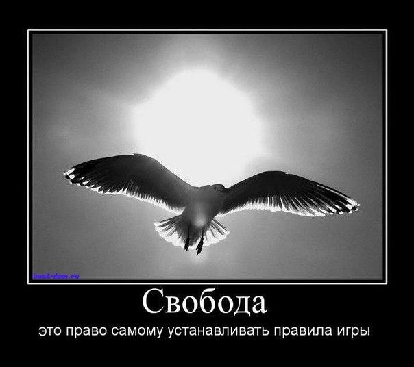 g_C8tKYGqmA
