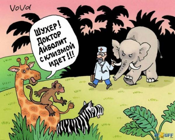 Айболит с клизмой