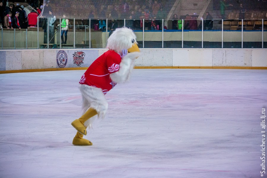 Талисман хоккейного клуба