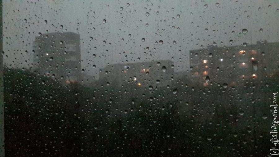 дождь.  Фото