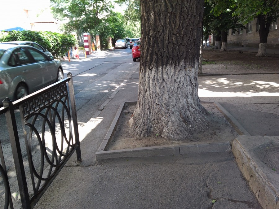 Суровые ростовские тротуары