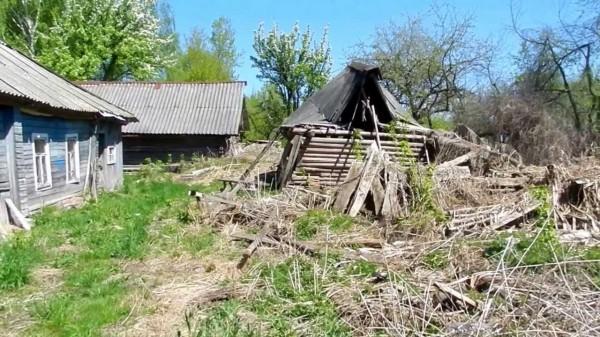 В России оказались заброшены почти 100 млн гектаров сельскохозяйственных угодий