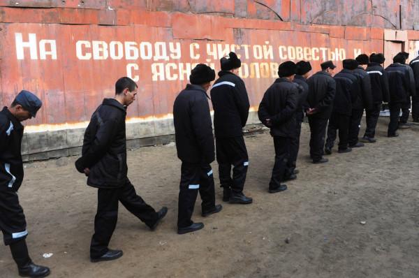 Правозащитники предлагают Путину отозвать доклад для ООН