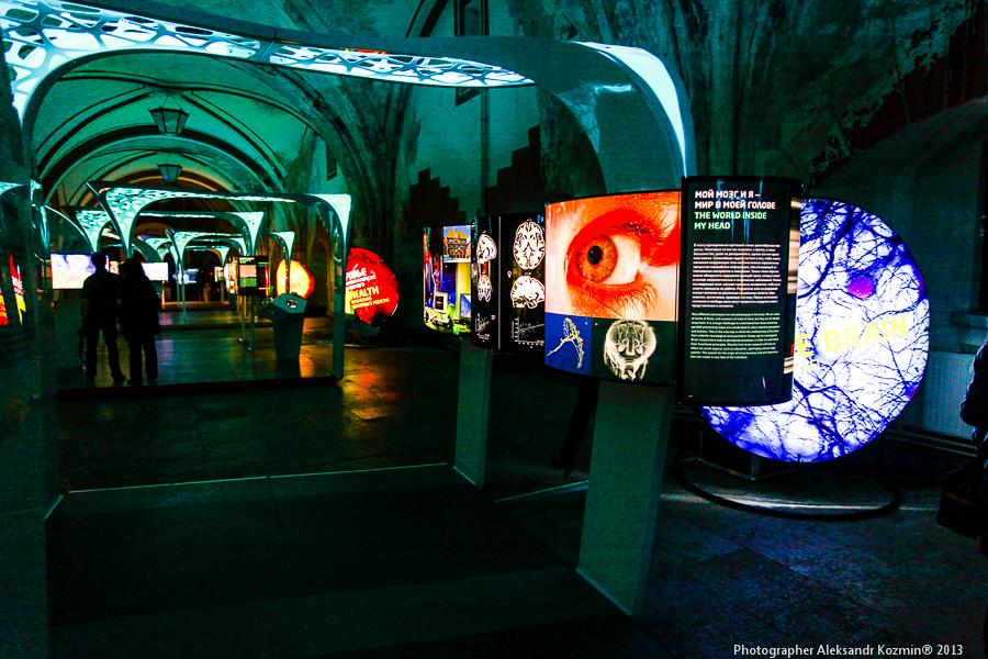 Max Planck Science Tunnel — НАУЧНАЯ ВЫСТАВКА ОБЩЕСТВА ИМ. МАКСА ПЛАНКА