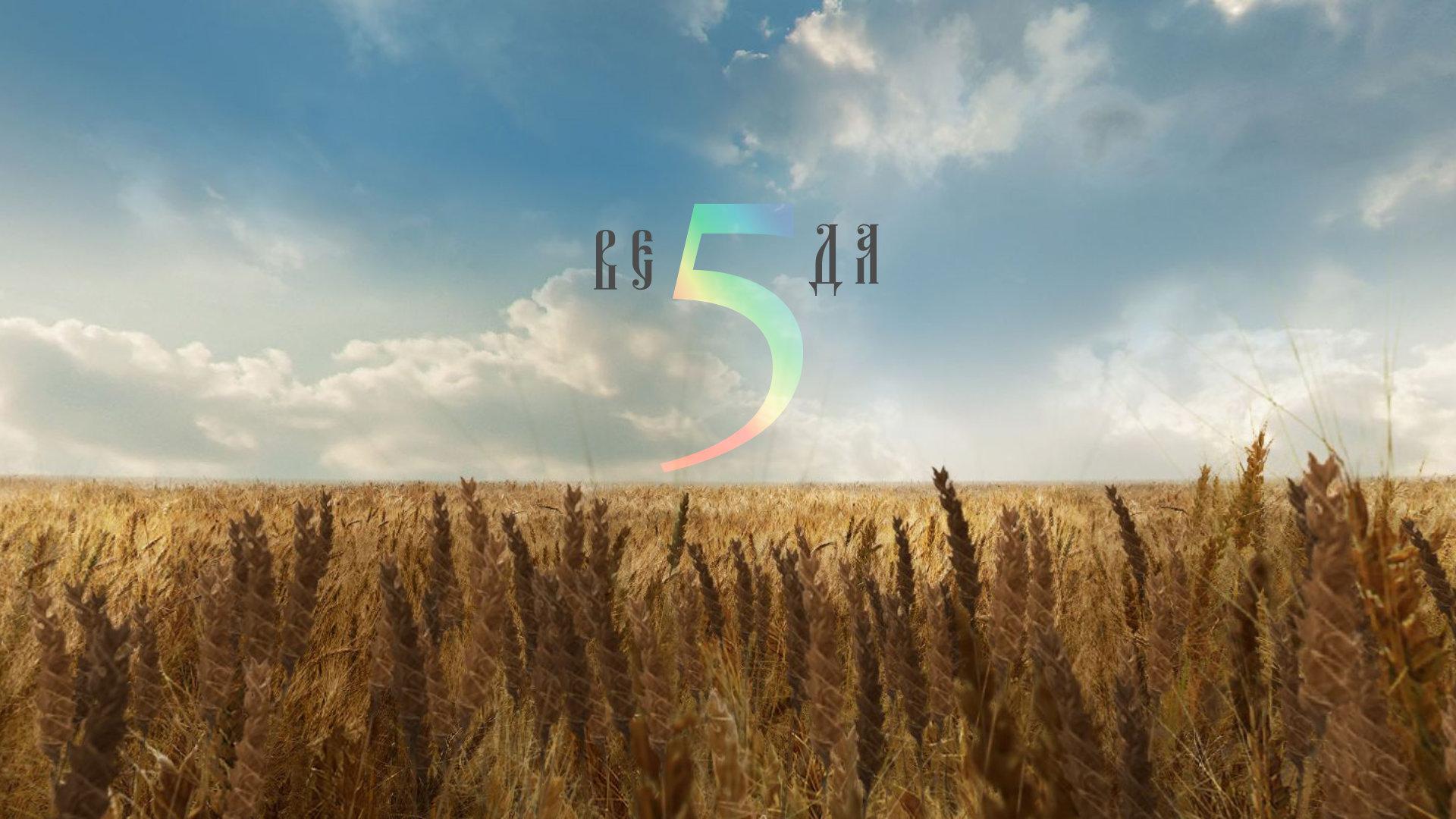 Скачать книгу сибирская йога