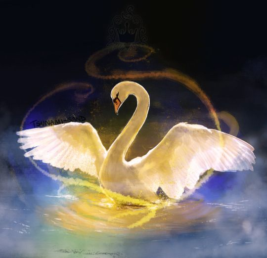 swan_princess.jpg