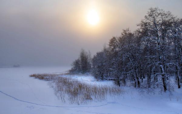 earth-seasons-winter-63567.jpg