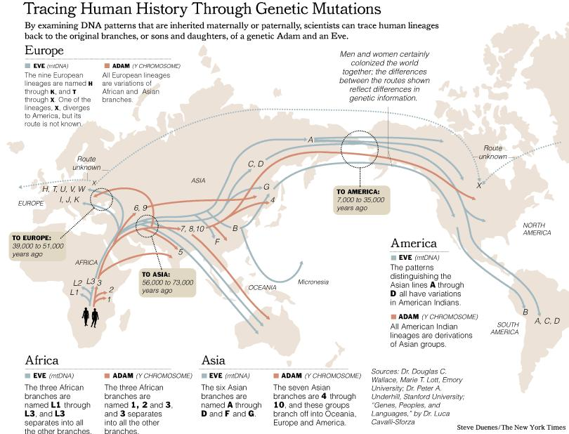 Migrations Map