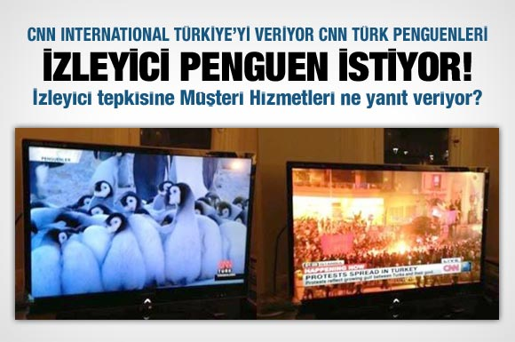 cnn turk и пингвины