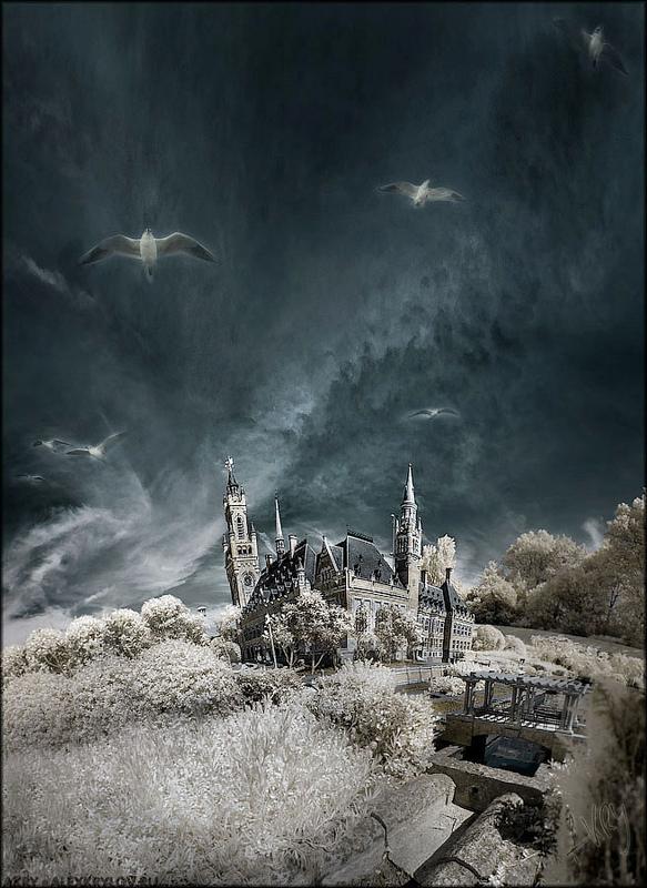 Sky Saga