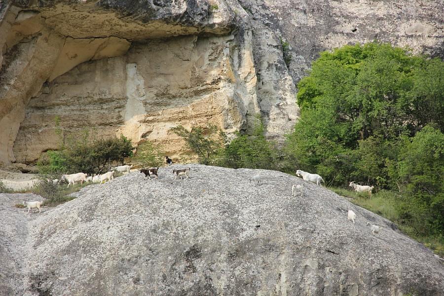 крым, Свято-Успенский мужской монастырь, aksanova.lj.ru, фотография, монастырь в скале,  IMG_6106