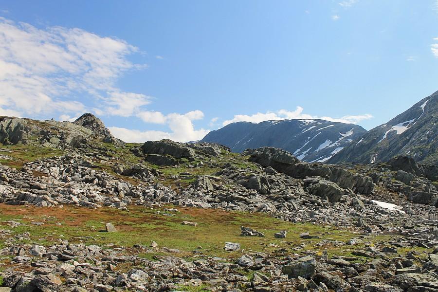 Норвегия, природа Скандинавии, красота, aksanova.livejournal,com, ЖЖ, фотография, настроение, свобода, мир, путешествия,  IMG_8550