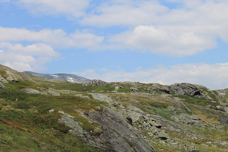 Норвегия, природа Скандинавии, красота, aksanova.livejournal,com, ЖЖ, фотография, настроение, свобода, мир, путешествия, IMG_8577