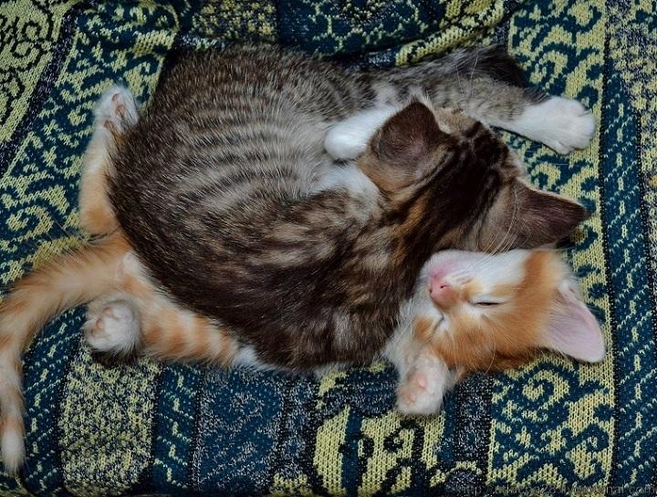 Одеяльце и матрасик