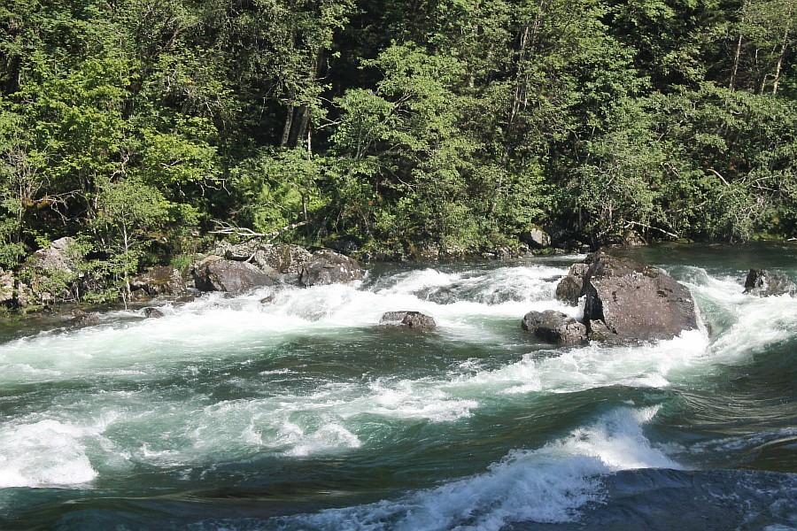 Норвегия, Флом, блогтур, путешествия, природа, водопад, aksanova.livejournal.com, Фломская железная дорога,  IMG_6639