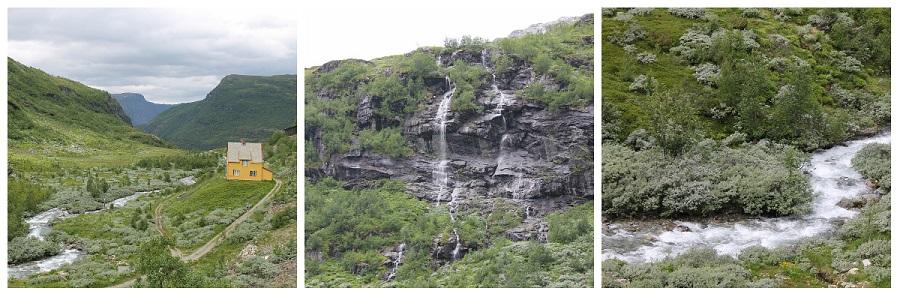 Норвегия, Флом, блогтур, путешествия, природа, водопад, aksanova.livejournal.com, Фломская железная дорога,  IMG_6700