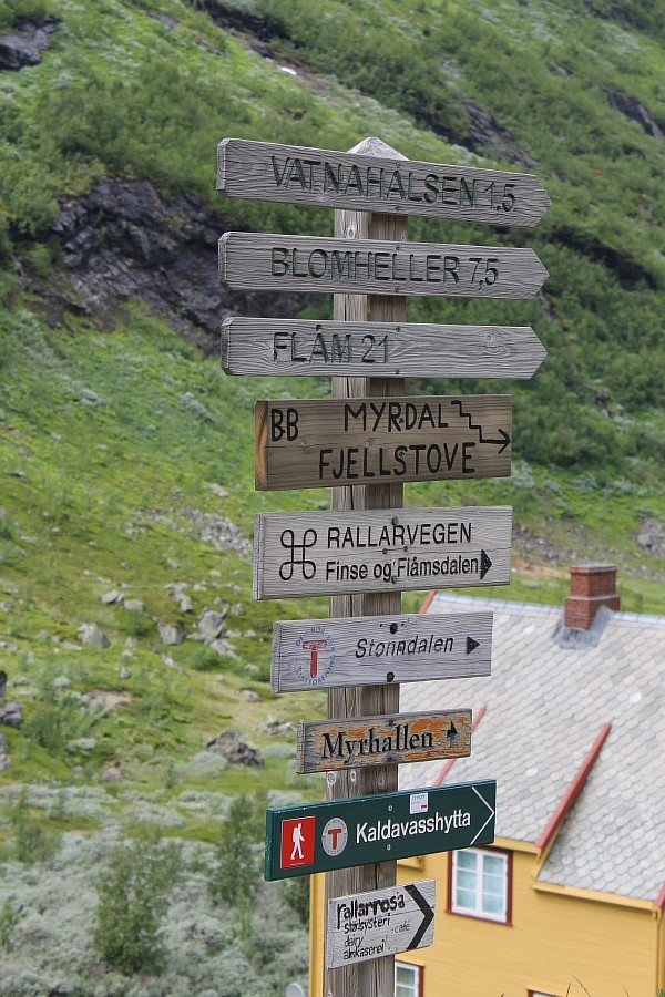 Норвегия, Флом, блогтур, путешествия, природа, водопад, aksanova.livejournal.com, Фломская железная дорога,  IMG_6713