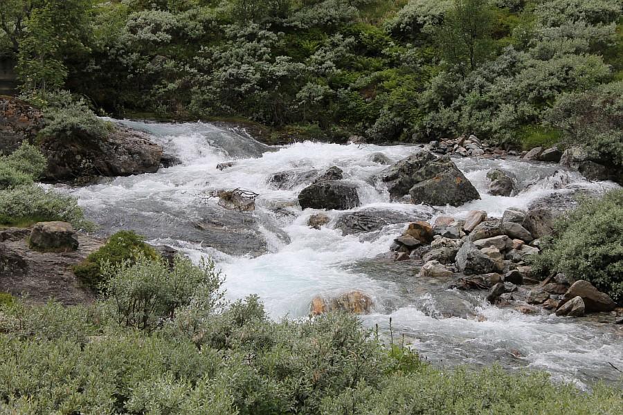 Норвегия, Флом, блогтур, путешествия, природа, водопад, aksanova.livejournal.com, Фломская железная дорога,  IMG_6723