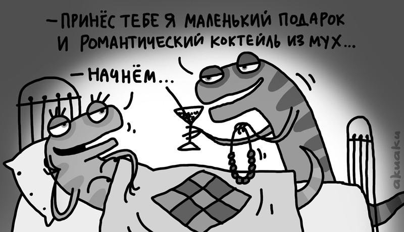 samki11