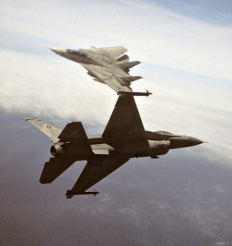 F-14A VF-213 F-16N