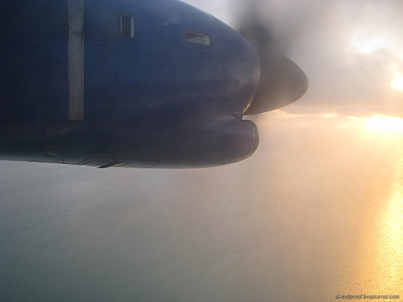 Авиабилеты Калининград СанктПетербург дешевые от 3 465