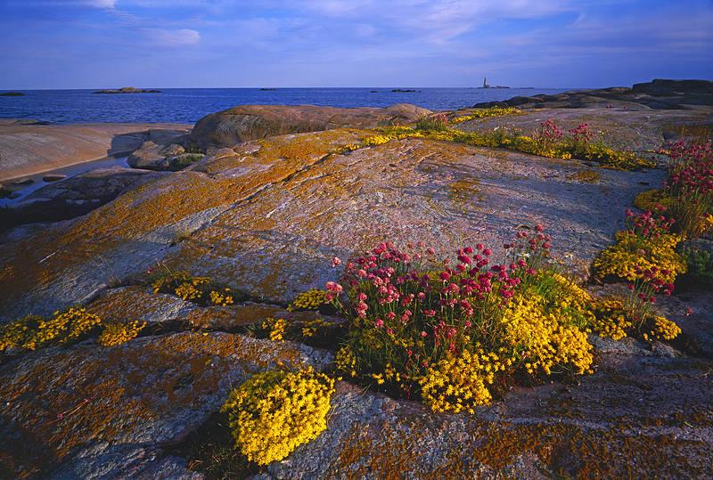 Архипелаг,_Аландские_острова,_Финляндия