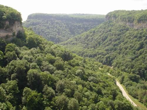 вб2-горные леса