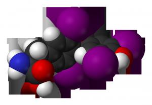 сбз2-тироксин модель
