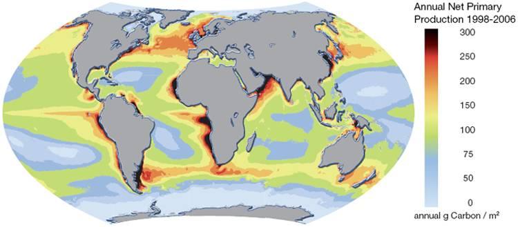 сбз6-продуктивность океана