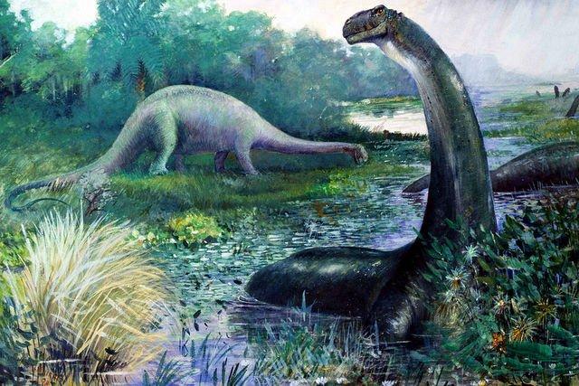 сбз16-бронтозавр