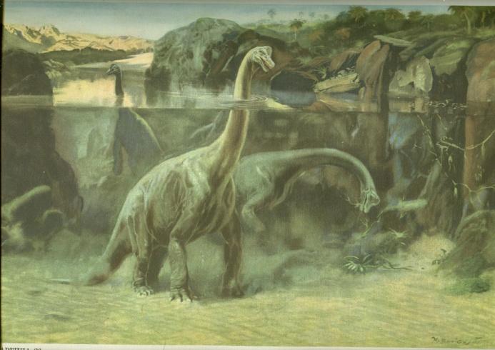 сбз16-брахиозавр