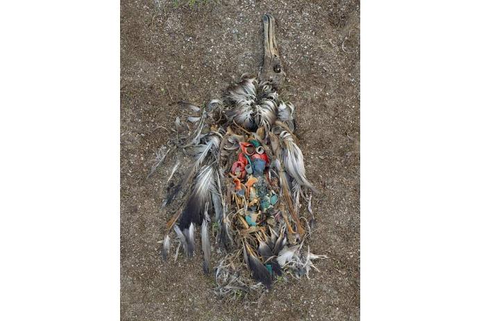 мусор океана6