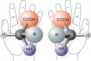 смметричные аминокислоты