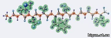 нуклеотидная цепь
