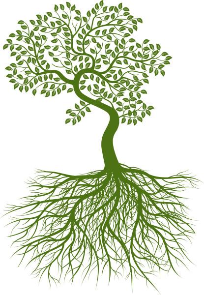 д-дерево