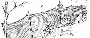 а-ловчая сеть