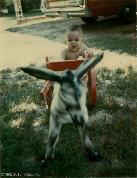 me_donkey_08_1966sml