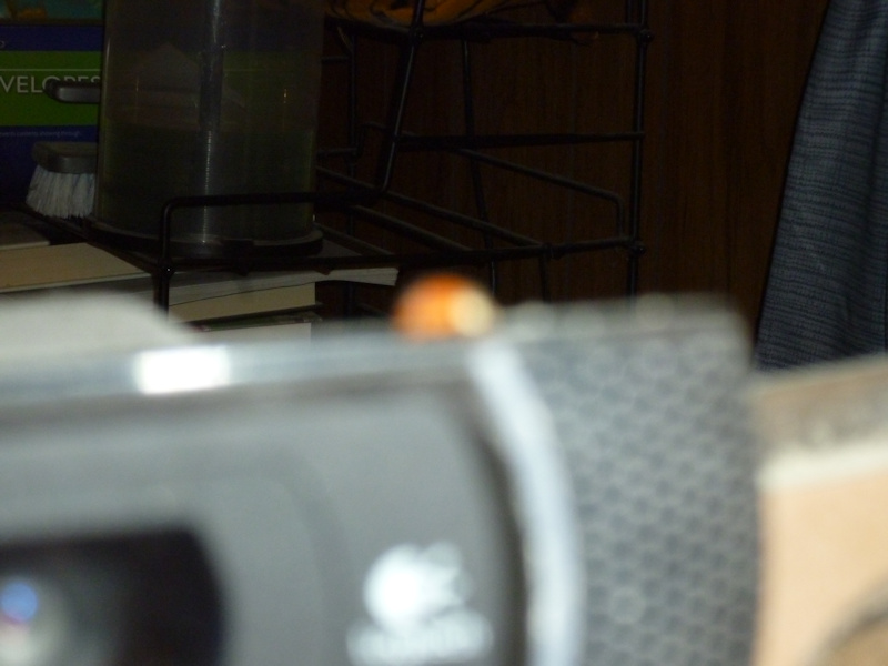 ladybug_webcam_12_16_2017.jpg