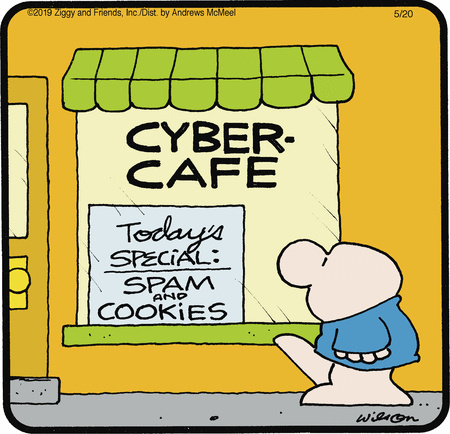 ziggy_spam_cookies_cyber_cafe_05_20_2019.jpg