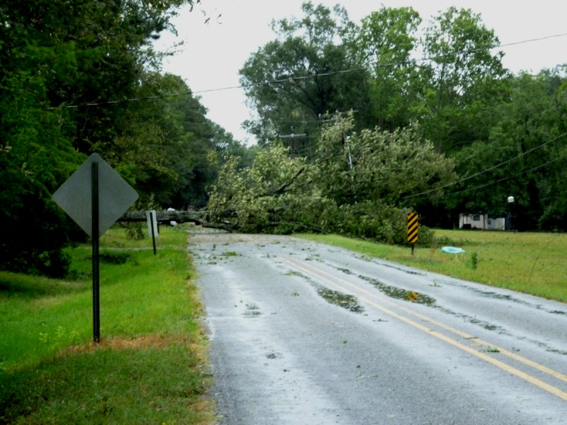 fallen_tree_hurricane_laura_08_27_2020sml.jpg