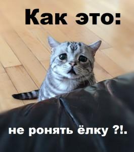 12018-03-12_221323.jpg
