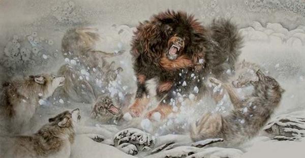 банхар и волки