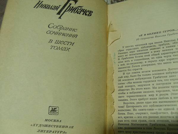 Книжный шкаф (2)