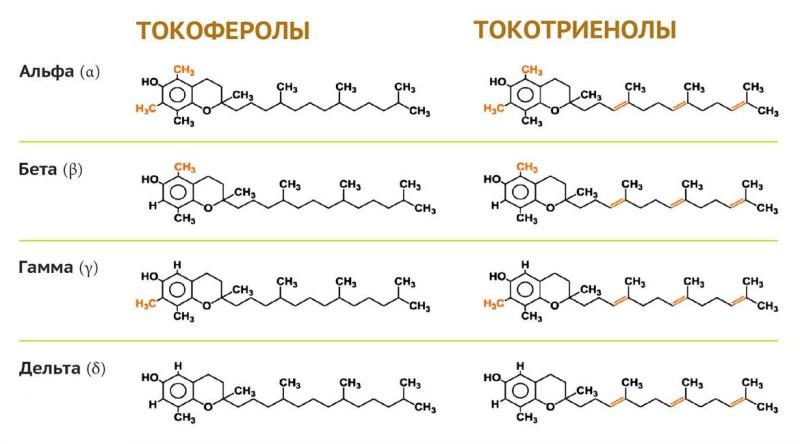 Изомеры витамина Е